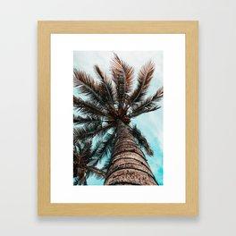 Palm View Framed Art Print