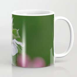 Classic Image Of Apple Tree Blossoms In The Garden In Spring Coffee Mug