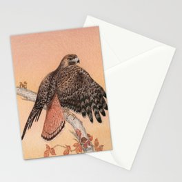 Red-tailed hawk Stationery Cards