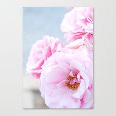 Blushing Roses Canvas Print