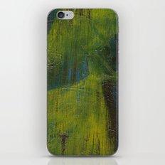 A Walk in the Rain iPhone & iPod Skin