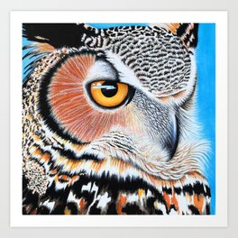 Close up of Owl Eye Art Print