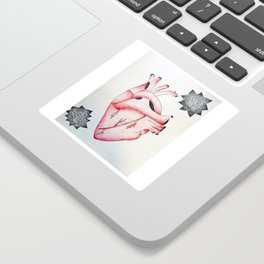 Anatomical Heart & Roses Sticker