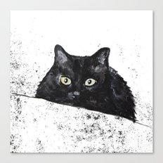 black cat yellow eyes Canvas Print