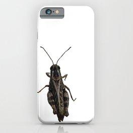 Greek Grasshopper iPhone Case