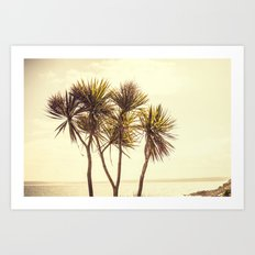 St. Ives Palms, Cornwall Art Print