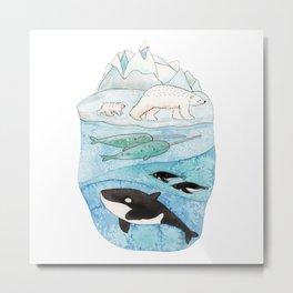 Antarctic whales Metal Print