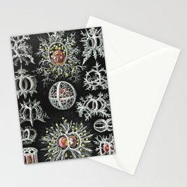Marine creatures by Ernst Haeckel Stationery Cards
