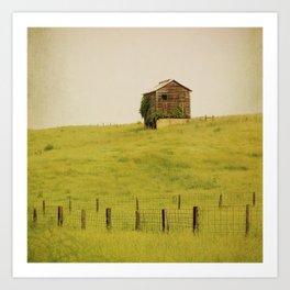 Summer Pastures Art Print