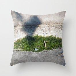 Longwood Gardens - Spring Series 98 Throw Pillow