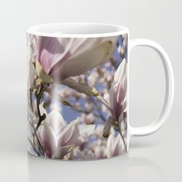 Magnolia Blossoms Shiver Against A Chill Wind Coffee Mug