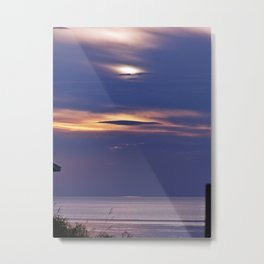 Seal in the Sky Metal Print