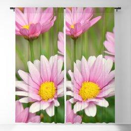 Daisy pink 090 Blackout Curtain