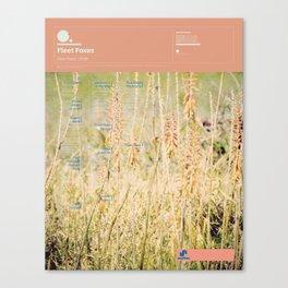 The Visual Mixtape 2010 | Fleet Foxes | 05 / 25 Canvas Print