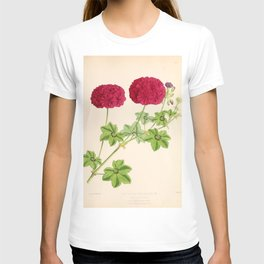 Ivy Leaved Pelargonium T-shirt