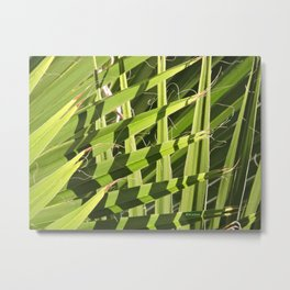 TEXTURES -- Palm Fronds Intersecting Metal Print