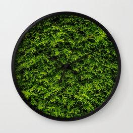 Coniferous Wall Clock
