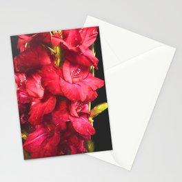 Red Gladiolas on Black Stationery Cards