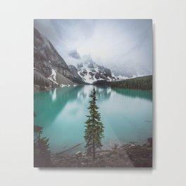 Solo Tree Metal Print