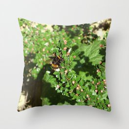 Bumble Bee on Cotoneaster  Throw Pillow