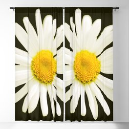 Daisy on a black background - #Society6 #buyart Blackout Curtain