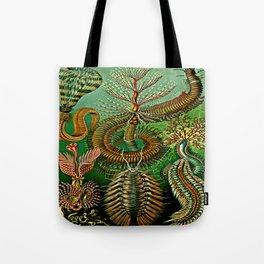 Chaetopoda Tote Bag