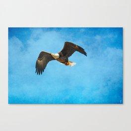 Early Spring Flight - Bald Eagle Canvas Print