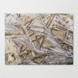 Shattered Perspective Canvas Print
