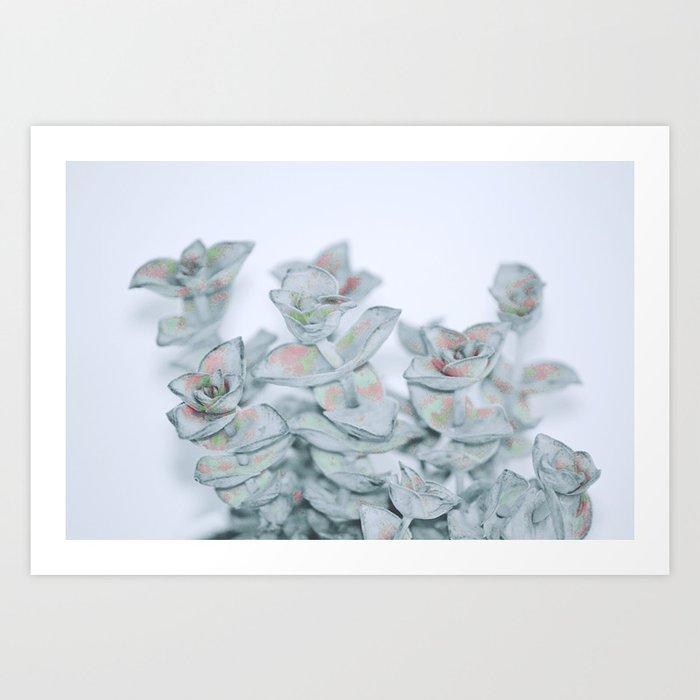 #164 Art Print