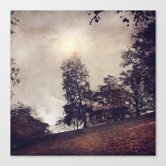 Sun & Trees Canvas Print