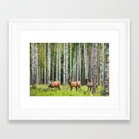 elk Framed Art Prints featuring Elk by Andrea Gingerich
