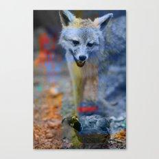 wilderness 15 Canvas Print