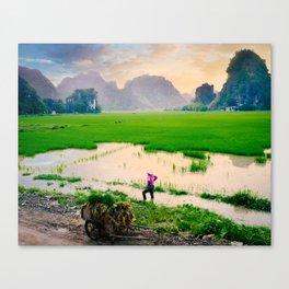 Idyllic Vietnam Countryside Canvas Print