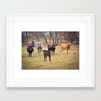 texas Framed Art Prints featuring Texas. by Jessie Kuruc