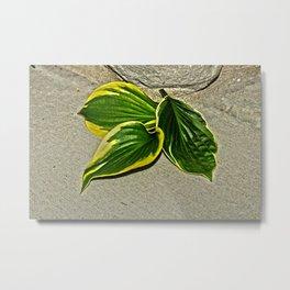 Gilded Leaves Metal Print