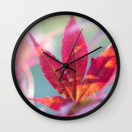 Acer palmatum Wonderland Wall Clock