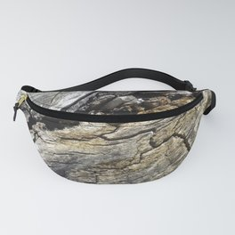 Fissure Fanny Pack