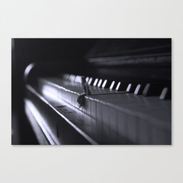 The Key to Beauty Canvas Print