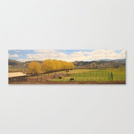 Cross Country American Landscapes - Tree Rows Canvas Print