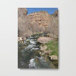 Jones Hole Creek, Dinosaur National Monument Metal Print