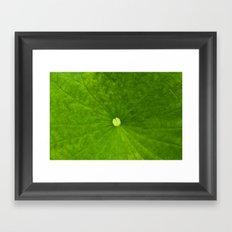 Untitled Leaf Framed Art Print