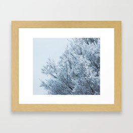 Ice Touched Tree Top Framed Art Print