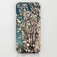 Winter Blossoms iPhone 6 Slim Case