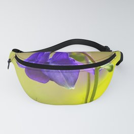 Purple Columbine In Spring Mood Fanny Pack