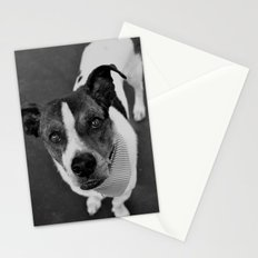 hello doggie Stationery Cards