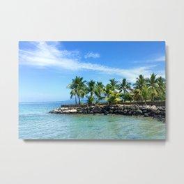 Bora Bora Palm Trees Metal Print