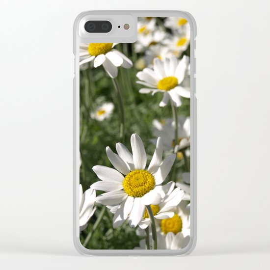 SUN WORSHIPPING DAISY FLOWERS Clear iPhone Case