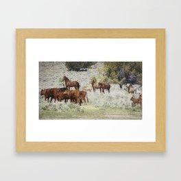 Meeting of the Herds Framed Art Print