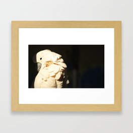 Bird Shadow Framed Art Print