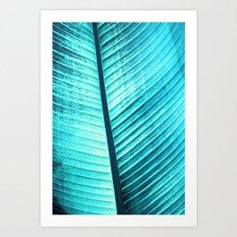 Maurelli Turquoise Banana Tree Leaf Art Print